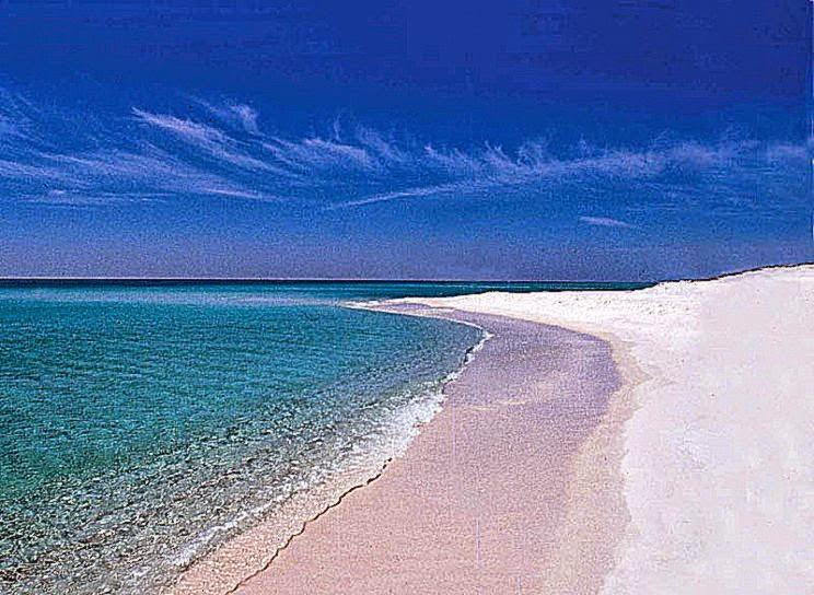 1254247154pensacola beach