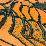 Stairway to Heaven - The Hani Rice Terraces of Yunnan Province