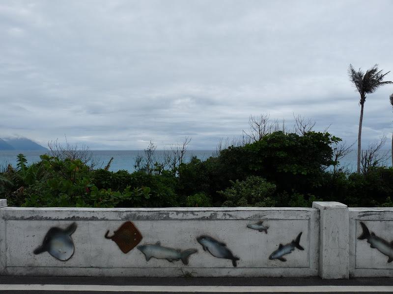 TAIWAN . Hualien et au Sud de Hualien,presque jusqu à Taitung - P1160854.JPG