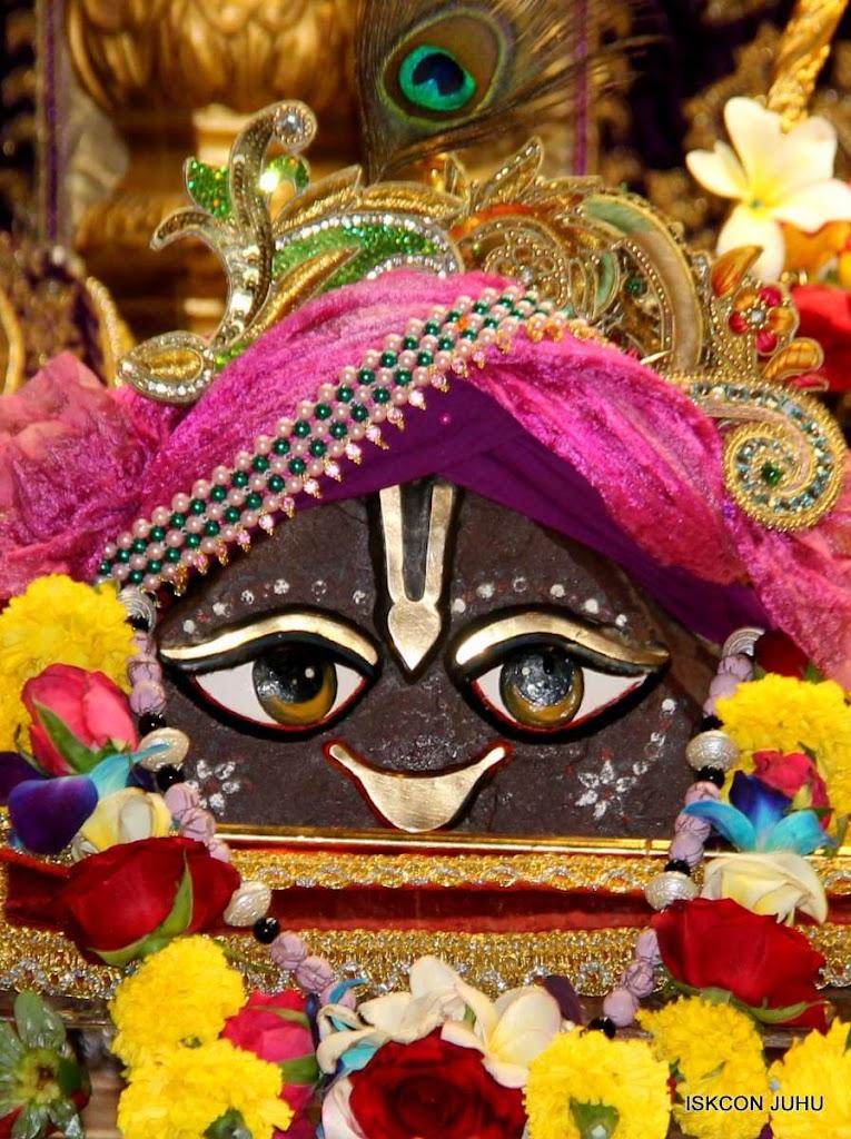 ISKCON Juhu Sringar Deity Darshan 19 Dec 2015 (12)