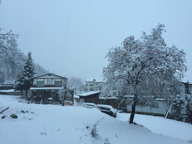 Nozawa Onsen, view from our room at Lodge Nagano
