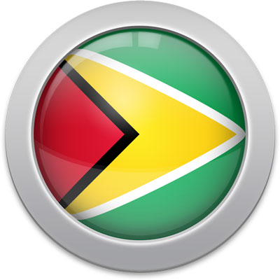 Guyanese flag icon with a silver frame