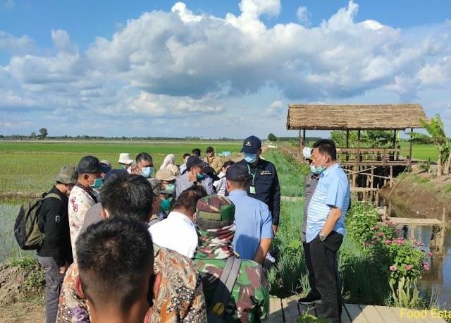 Food Estate Kalteng, Sekjen dan Kepala BPPSDMP Kementan Ajak Petani Berkorporasi