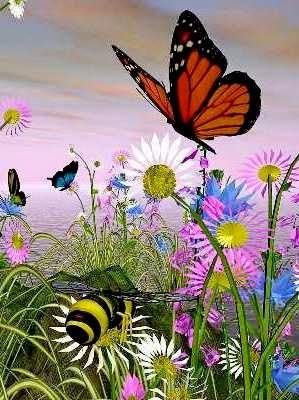 Gambar Bunga Dan Kupu-kupu : gambar, bunga, kupu-kupu, BELAJAR