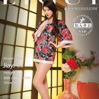 LiGui 2015.06.21 网络丽人 Model 佳怡 [29P] cover.jpg