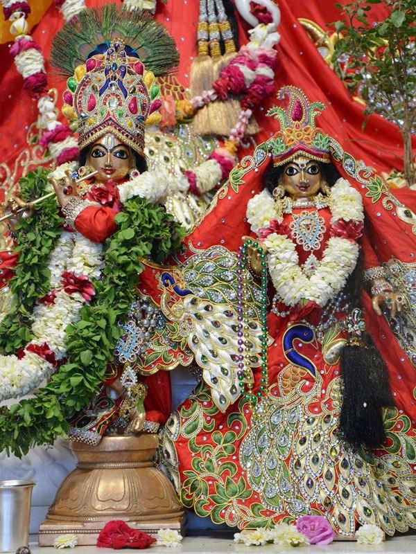 ISKCON Ahmedabad Deity Darshan 05 Mar 2016 (4)