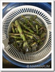 ricetta vellutata di asparagi 05