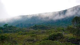 Minas deve registrar temperaturas negativas e geadas nos próximos dias, alerta Igam