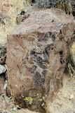 More bighorn petroglyphs.