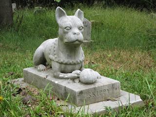 Darf ich Haustier im Garten begraben?