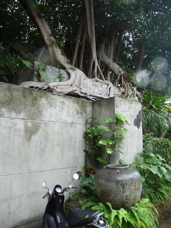 TAIWAN . Hualien et au Sud de Hualien,presque jusqu à Taitung - P1170017.JPG