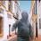 riadh bourri's profile photo