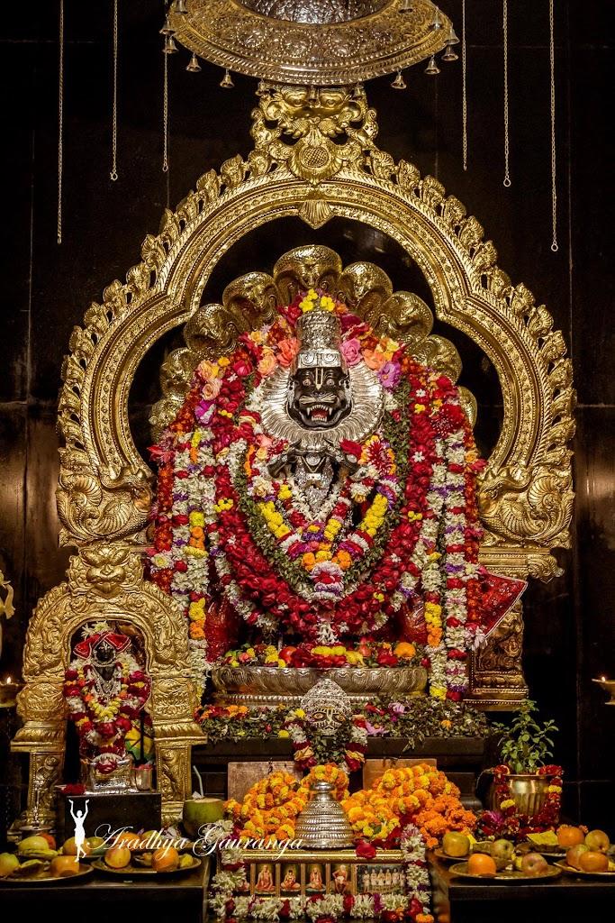 ISKCON Mayapur Deity Darshan 14 Jan 2017 (40)