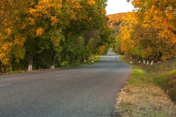 Via l'autunno di Eduard