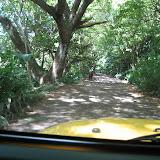 Hawaii 2006 - Waipio Valley