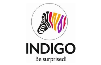 Indigo Paints pvt Ltd IPO : Owner,brand ambassador,Indigo Paints IPO prices,greay market premium,subscription Full Detail in Hindi