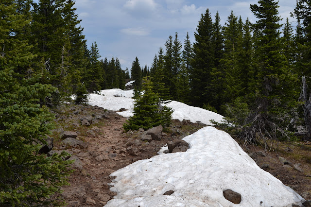 trail and snow piles