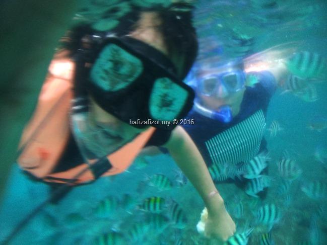 snorkeling pulau redang_3