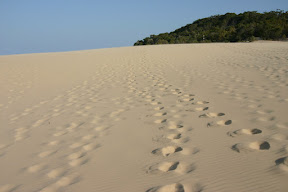 Footprints down a sandy hill