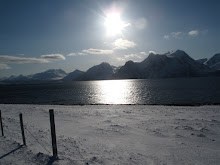 skitour-lyngen-norwegen-norway  (16)