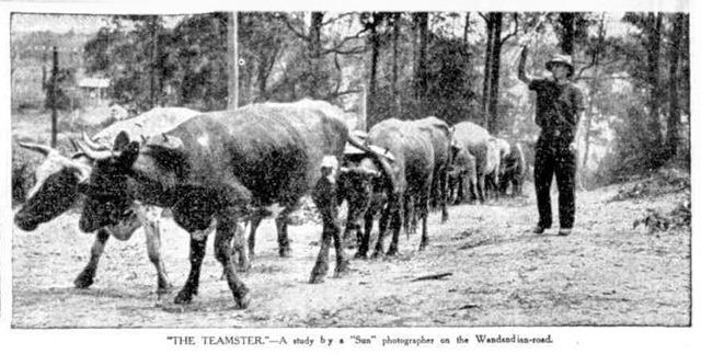 bollock-team-1935