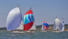 J/105s sailing Whidbey Island Race Week