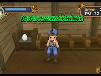 Cara Mendapatkan Telur GRATIS!!! Di Awal Permainan Harvest Moon: Hero Of Leaf Valley