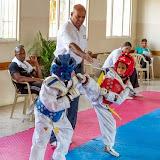 BestOfTheBestTaekwondoCupOct42014