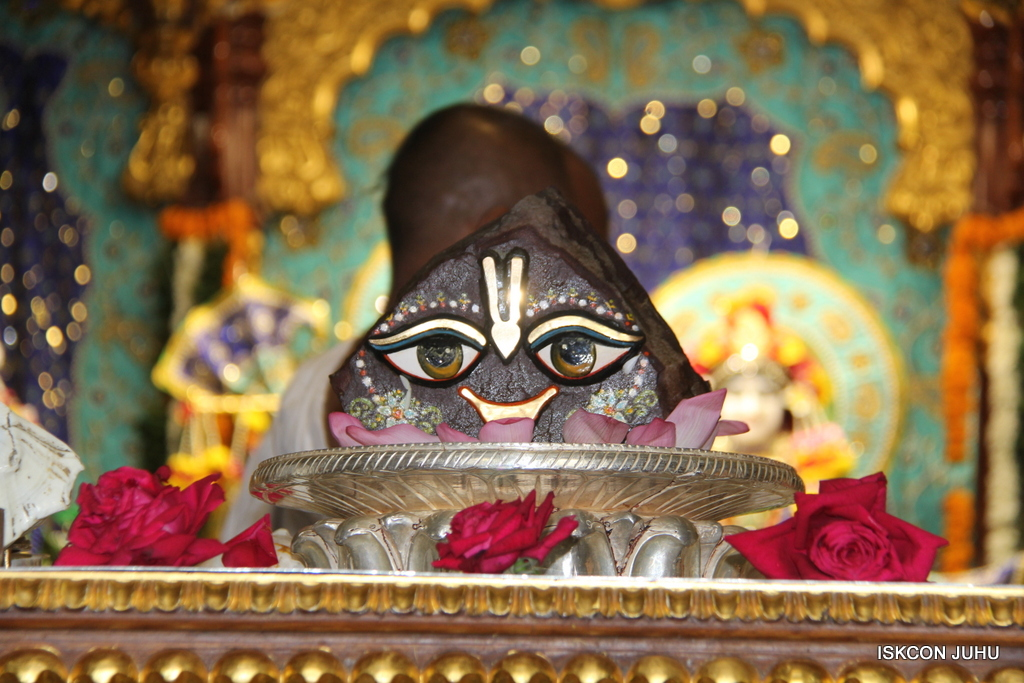 Govardhan Abhishek Darshan  At ISKCON Juhu on 31st Oct 2016 (2)