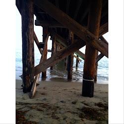 Goleta Beach's profile photo