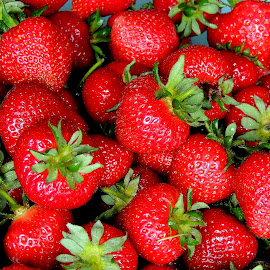 Jigsaw Strawberries by Becky Luschei - Food & Drink Fruits & Vegetables ( garden fresh, puzzle, closer look, fruit, jigsaw, strawberries )