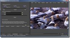 برنامج تعديل الفيديو وضع علامة مائية Accessory Media Editor 9.5.0 -2