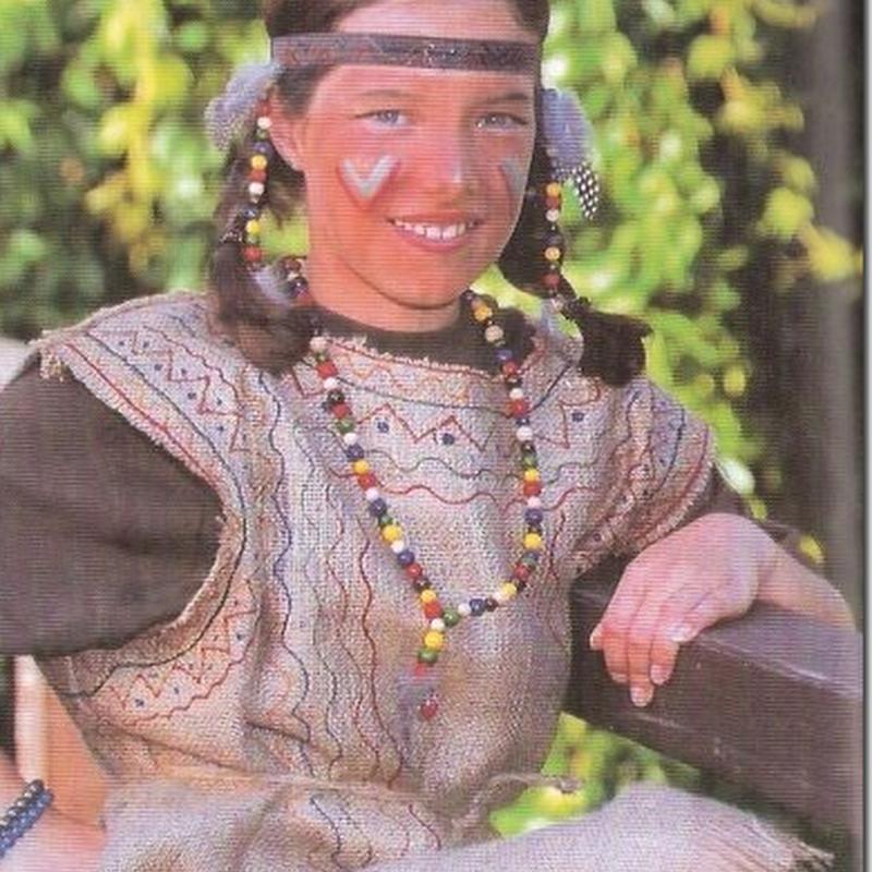 disfraz casero  de indio