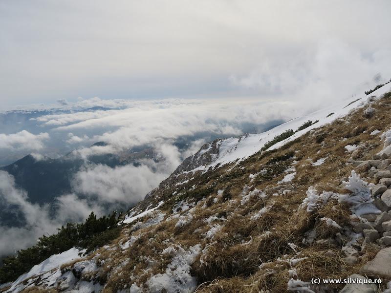 2016.02.28 - P Craiului - Piatra Mica si Creasta Nordica