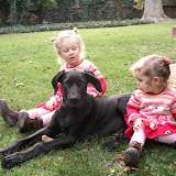 The Dynamite Danes Family! - image002.jpg
