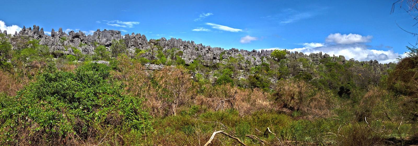 Madagascar8 - 096.jpg