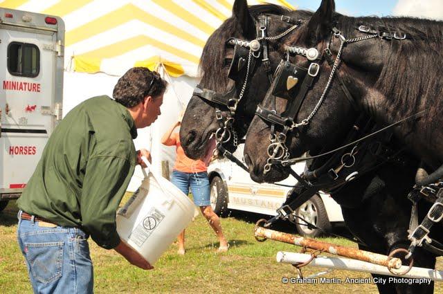OLGC Harvest Festival - 2011 - GCM_OLGC-%2B2011-Harvest-Festival-59.JPG