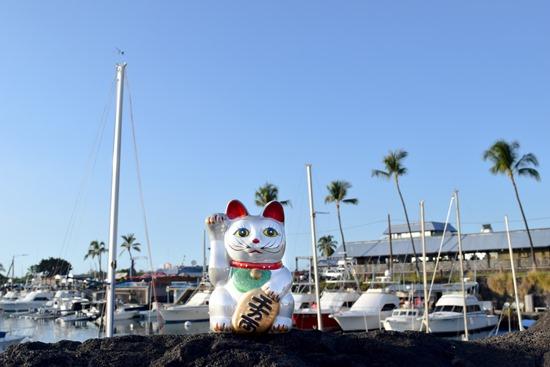 ハワイ島のまねき猫