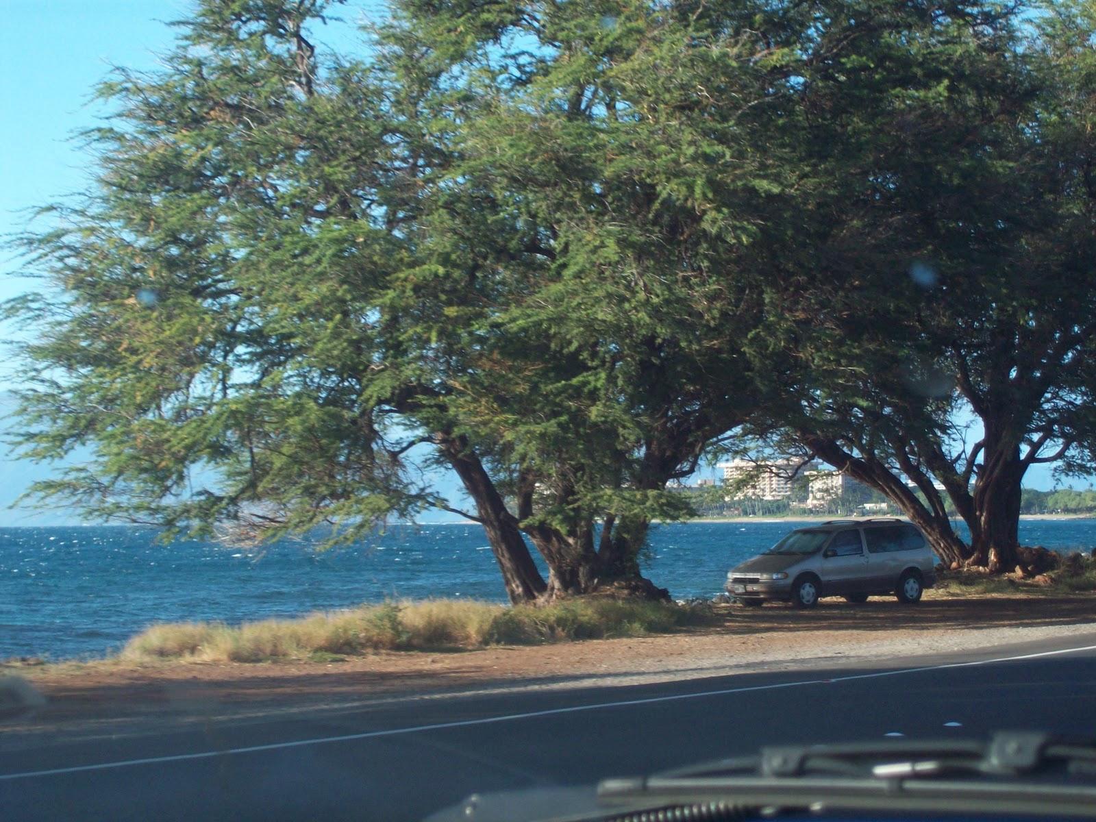 Hawaii Day 5 - 114_1658.JPG