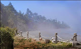 """""""Fog Coming In"""" by Joyce Estep - 2nd Place B General"""