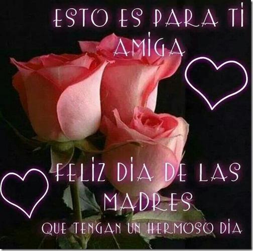 rosas34