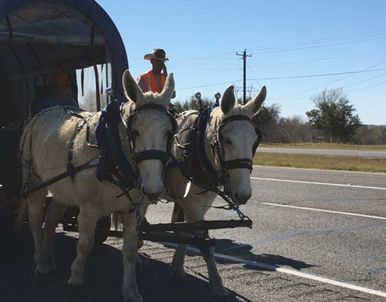 south texas trail riders (2)