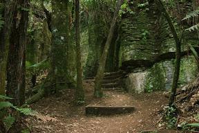 Rock formations near Waitomo Caves