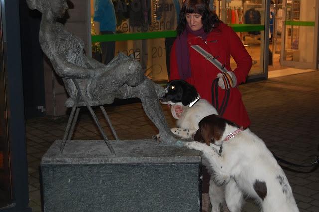 Jonge Hond centrum Emmen - 2012-04-01%2B045.JPG