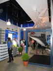 Recepción y vestíbulo del Centro del Calamar Gigante