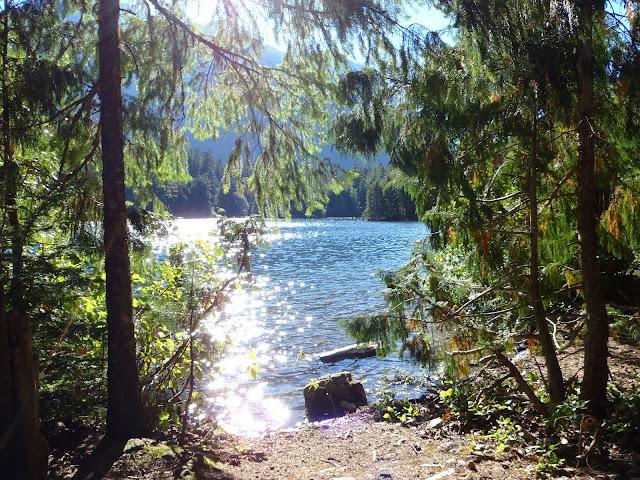 Ross Lake July 2014 - P7080094.JPG