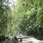 southamerica-2-085.jpg