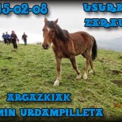 Argazkiak (Txomin Urdampilleta)