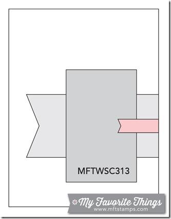 MFT_WSC_313