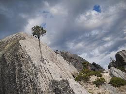 Castle Crags (...a storm brewing)